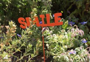 Smile sign in garden